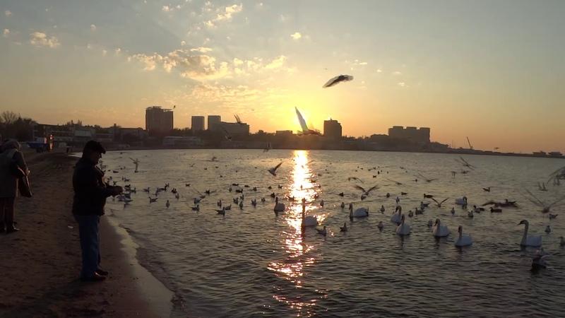 Анапа видео декабрь 2020 Центральный пляж