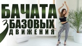 Бачата для начинающих. Базовые движения   Обучающие видео уроки танцев в домашних условиях.