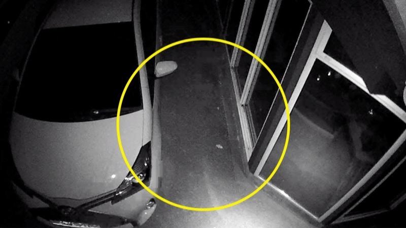 Гаражға келген әкесінің әруағы камераға түсіп қалған