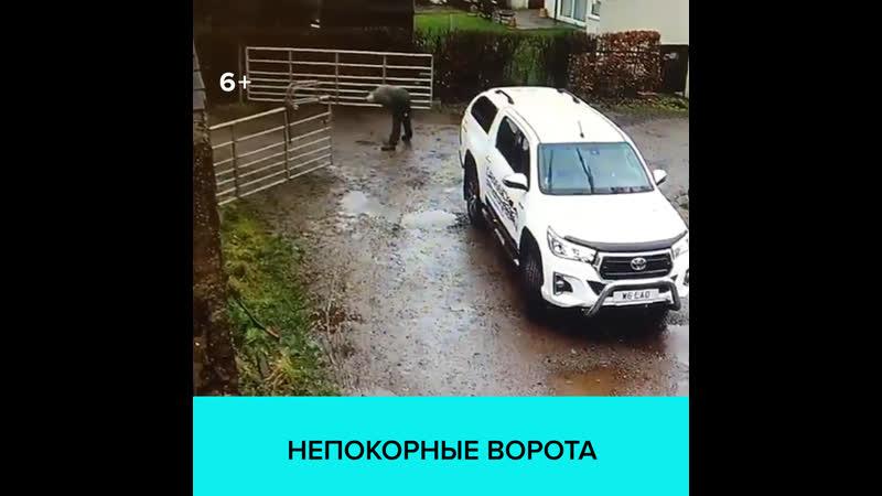 Непокорные ворота Москва 24