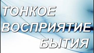"""""""Тонкое Восприятие Бытия"""" Сатсанг в Самаре"""