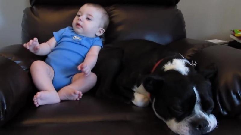 baby poop - Watch In HD