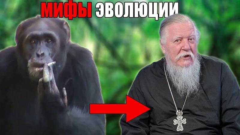 Мифы и Заблуждения об ЭВОЛЮЦИИ Доказательства Дарвин Человеко обезьяны и т д