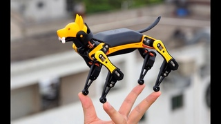 Petoi Bittle, now available on Indiegogo - a Realistic Palm-sized Robot Dog for STEM and Fun