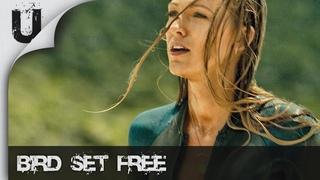 Sia - Bird Set Free [The Shallows]