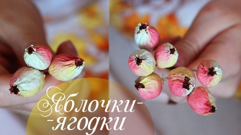 Райские яблочки или ягодки из гофрированной бумаги