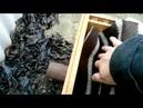 Пчеловодство Экстренное вмешательство 11 декабря 2019 г переформировка гнезда