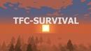 Эхо войны TFC-SURVIVAL