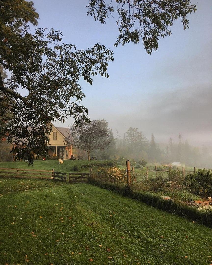 вежливые картинки вертикальные утро в деревне том, что именно
