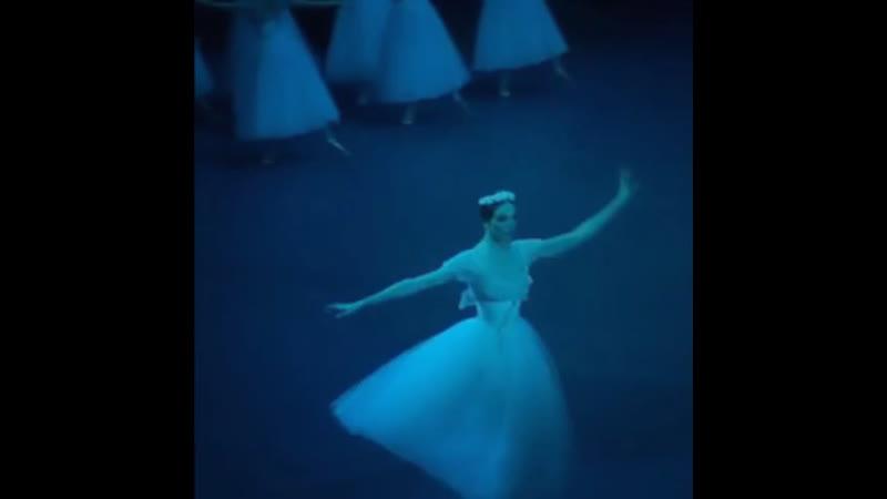 "Olga Marchenkova as Myrtha ✨🌿 in Giselle"" 31 05 2019 Act II"