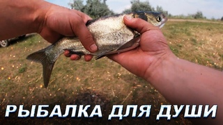 Рыбалка для души|Удочки|Донки|Технопланктон