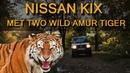 Наткнулись на двух диких тигров за рулём Nissan Kix Pajero Mini