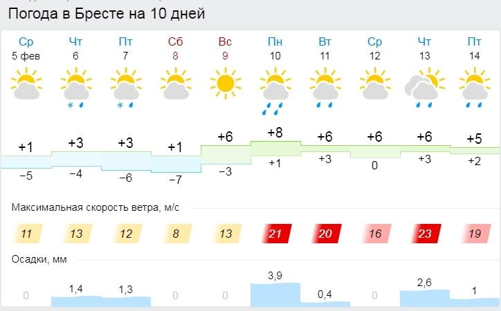 Порывистый ветер и ночные заморозки до -10°С ожидаются в Беларуси 6 февраля
