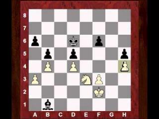 Karpov's Immortal Endgame vs Garry Kasparov - Game 9, 1984 - Amazing Game - Amazing