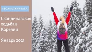 Скандинавская (северная) ходьба зимой в Карелии