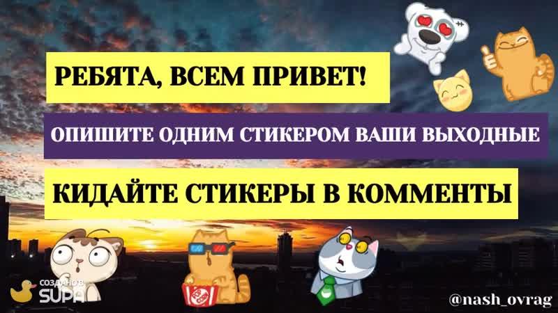 Наш_овраг_Стикермания