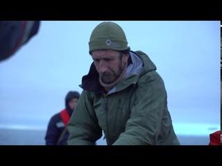 Экспедиция по изучению арктических видов животных