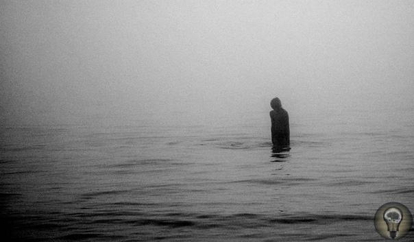 По следу Призрака болотного зверя. Тайна Ивачевкого озера В трёх километрах к Востоку от города Череповца Вологодской области расположено небольшое озеро Ивачевское, которое пользуется в