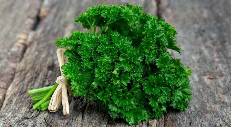 Роль трав в вегетарианском питании, изображение №3