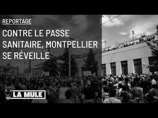 Contre le passe sanitaire, Montpellier se réveille