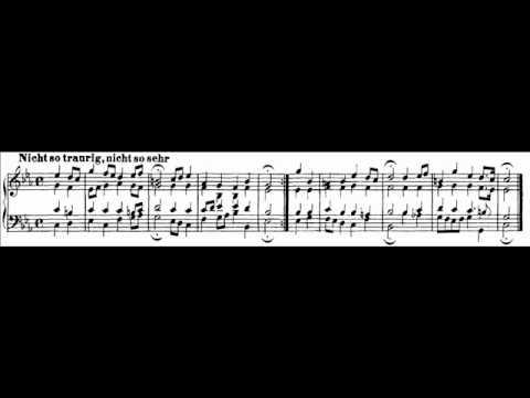 J S Bach BWV 384 Nicht so traurig nicht so sehr Klaas Hoek harmonium reed organ