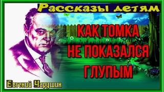 Как Томка не показался глупым —Евгений Чарушин —читает Павел Беседин