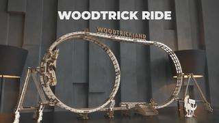 """Большие Американские горки """"Wood Trick Ride"""" от Wood Trick"""