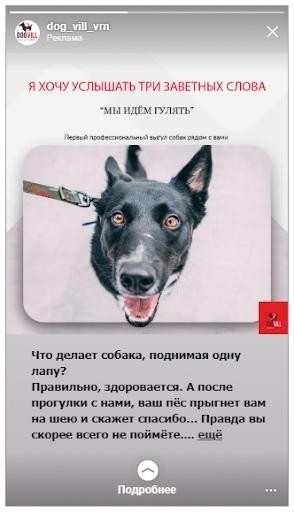 Кейс: продвижение стартапа по выгулу собак, изображение №12