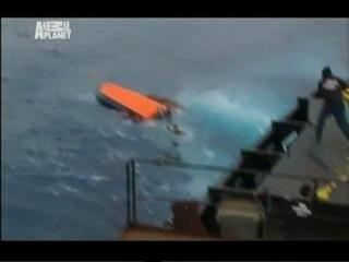 Китовые Войны 1 Сезон 1 серия из 7