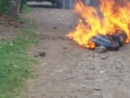 Негра сожгли.