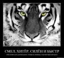 Фотоальбом человека Сергея Карандашова