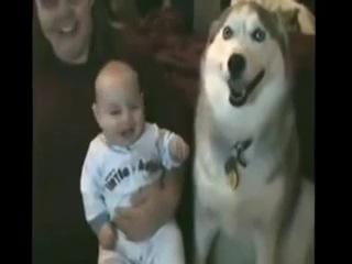 Классный детский радостный смех. (Приколы с животными и детьми.)