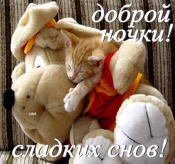 Сладких снов и доброго утра любимая картинки