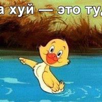 ТимурТаршхоев
