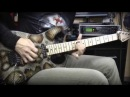 Charvel Warren Demartini Pro Mod SOUND TEST Neo