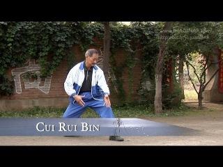Jian Wu - War dance with master Cui Rui Bin Master - Yi Quan