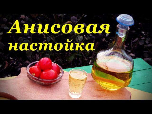Анисовая настойка рецепт настойки на водке