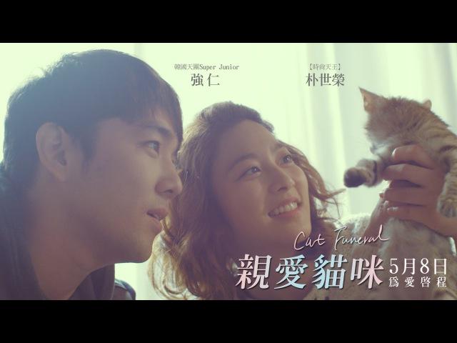 05 08《親愛貓咪》中文版正式預告 │Super Junior強仁首部主演電影,今春最溫暖人 2451