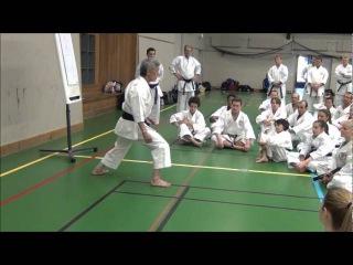 Seminar INOUE YOSHIMI - Hip Joint Relaxation for Zenkutsu-dachi Stepping