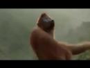 I Like To Move It - Monkey Dance