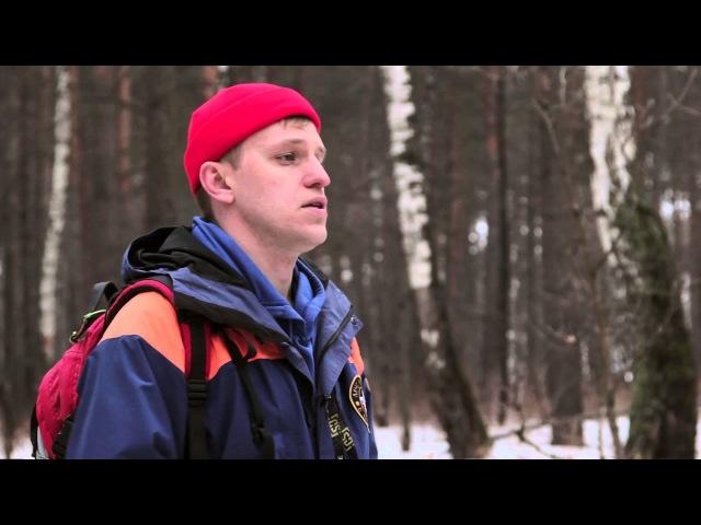 Как ориентироваться в лесу если заблудился