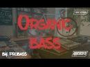 Dj ProBASS - Organic Bass (Live show) (Finger drumming Organ)