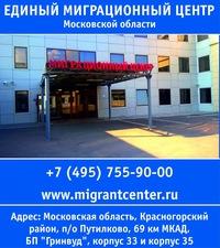 Стоимость оформления патента на работу в красногорске уфмс бланки регистрации иностранных граждан скачать бесплатно