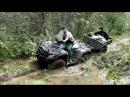 ATV Multiber прицеп для квадроцикла с балансирной подвеской
