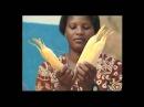 Brasil Susntentável Artesanato em palha de milho