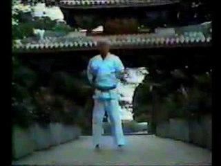Kimo Wall Tensho Kata
