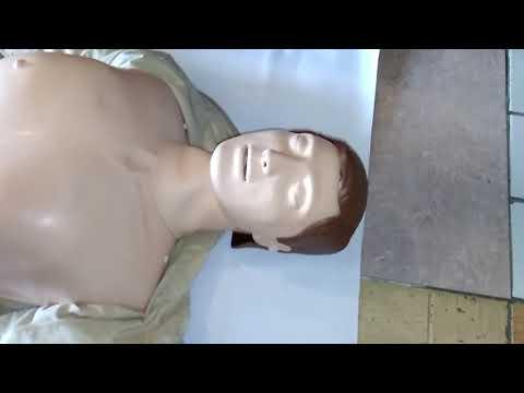 Обзор тела для реанимации с сайта тинтао.рф