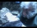 СЕРИАЛ - 2005 - Дело О Мёртвых Душах. Серия 8 (ПАВЕЛ ЛУНГИН)