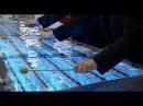 Asterion, for microtonal glass marimba