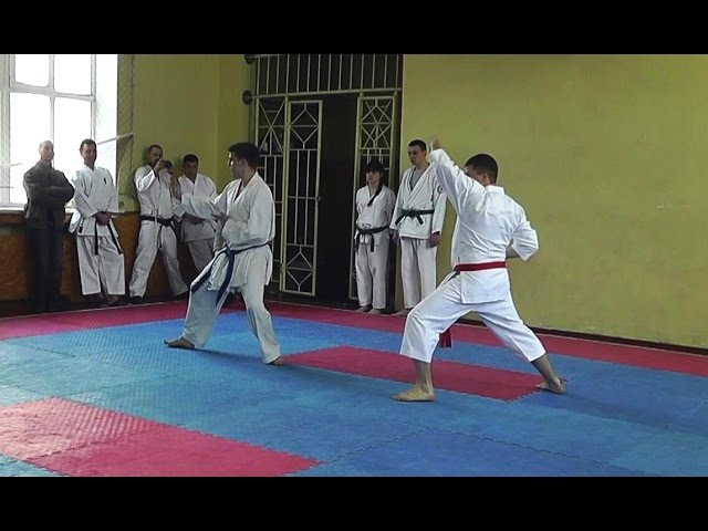 Каратэномичи ката взрослые 26 04 2015 года Karatenomichi kata adults 04 26 2015 Year